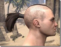 Shaved Warrior Ponytail 2