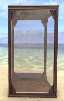 Display Case, Large