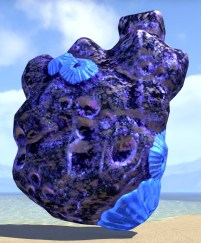 Mind Trap Coral Formation, Heart