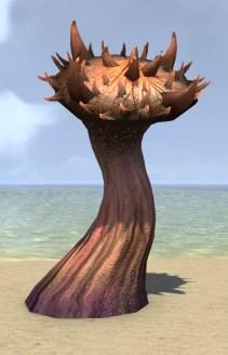 Mushroom, Nettlecap