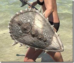 Dead-Water Maple Shield 2