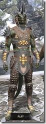 Dead-Water Rawhide - Argonian Male Front