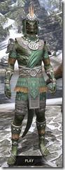Elder Argonian Homespun - Argonian Male Shirt Front