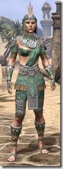 Elder Argonian Homespun - Female Shirt Front