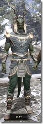 Huntsman Homespun - Argonian Male Shirt Front