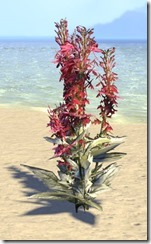 Plant Cluster, Cardinal Flower Small 1