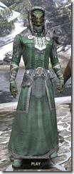 Silver Dawn Homespun - Argonian Male Robe Front
