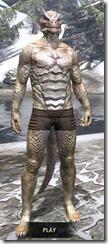 Marshmist Palescale Skin Argonian Male Front