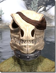 Pirate Skeleton Visage - Argonian Male Front