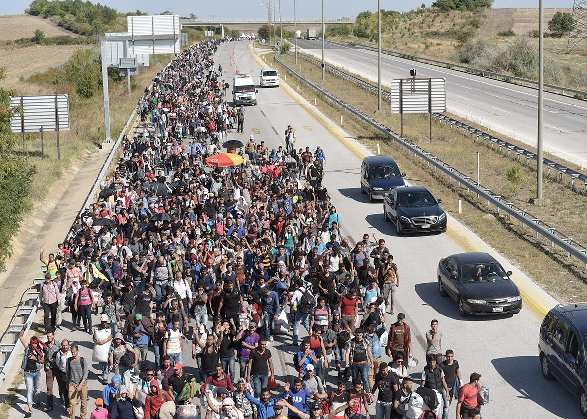 crisi rifugiati 14