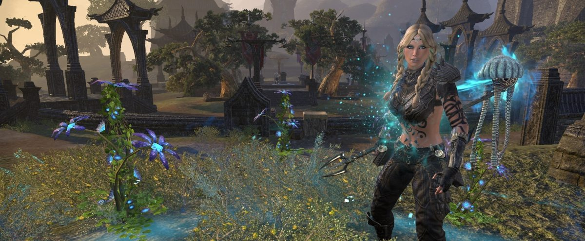 Warden Healer PvP Build and Guide – MMO Bits