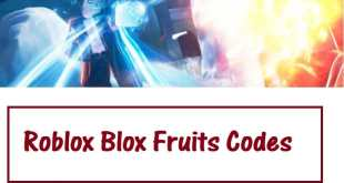 Latest Roblox Blox Fruit code 2020 | Code set available