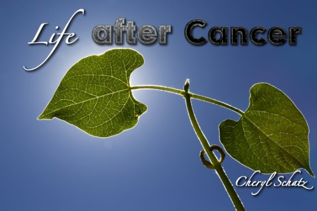 Life after Cancer-On the Path blog by Cheryl Schatz