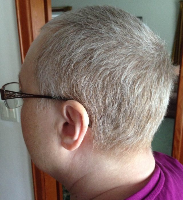 New growth grey hair On the Path by Cheryl Schatz
