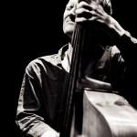 concert photo Chris Wood