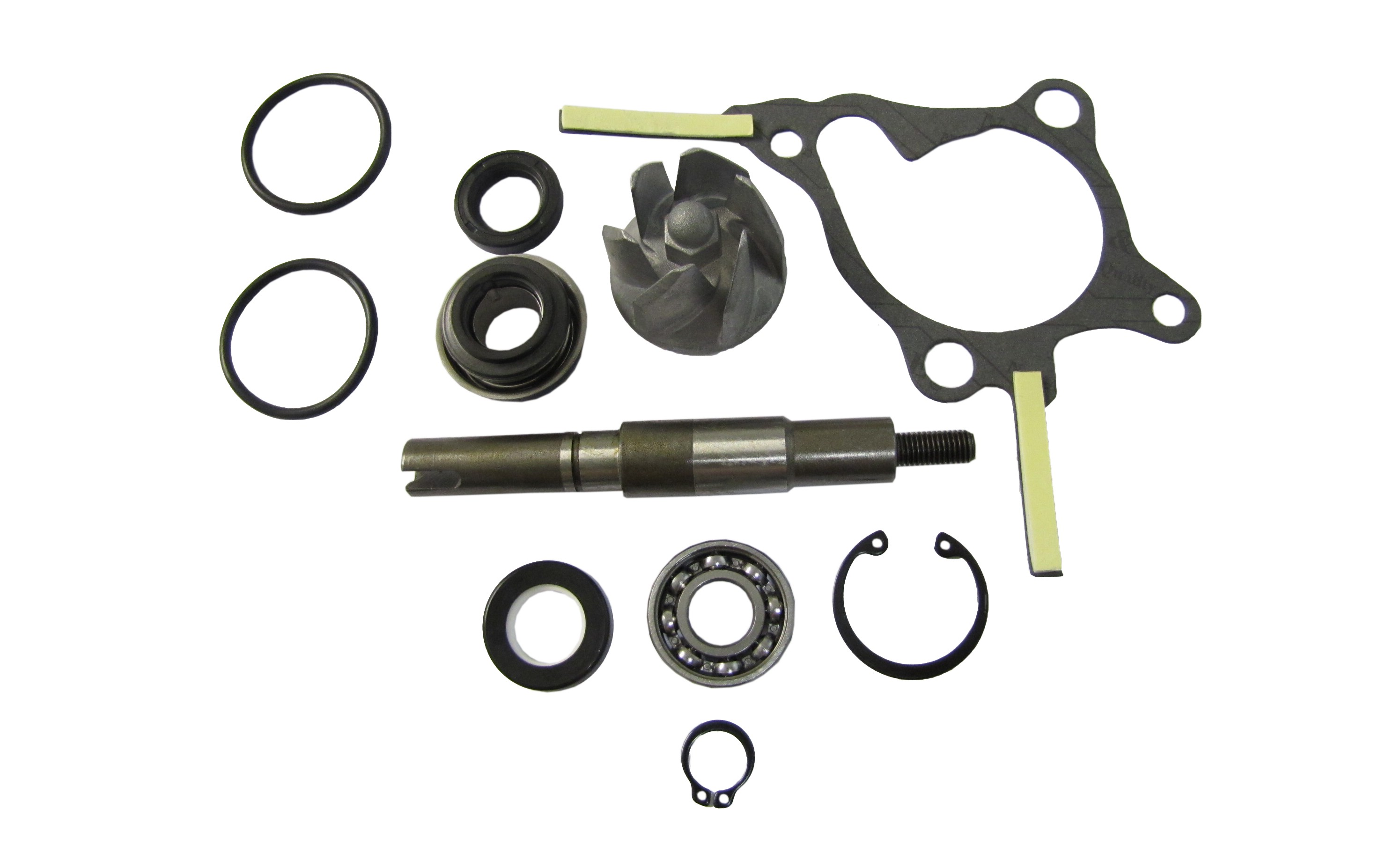 Water Pump Repair Kit Fits Honda FES250 Foresight (Set