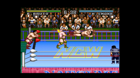 Choose between 12 wrestlers, each equipped with dynamic moves, and jump into the ring for some fierc ...
