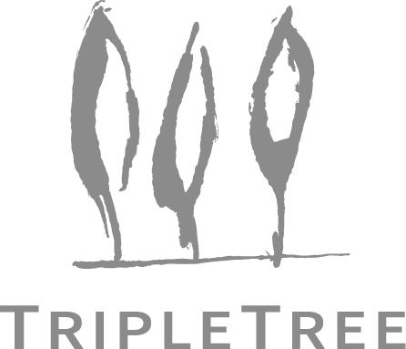 2017 TripleTree iAwards