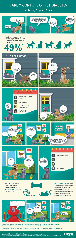 Diabetic Dog Symptoms Of Too Much Insulin : diabetic, symptoms, insulin, Merck, Animal, Health, Introduces, Control, Diabetes, Owners, Disease, Business