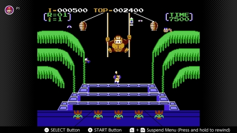 Based on the third game in the enormously popular arcade series, Donkey Kong 3 introduces an exterminator named Stanley as he desperately tries to protect the flowers in his greenhouse from Donkey Kong. (Photo: Business Wire)