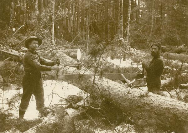 Two Lumbermen with Saw, from the Wisconsin Historical Imgages Collection