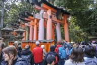 Kyoto-DSC_5778-b-kl