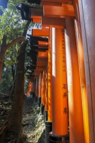 Kyoto-DSC_5787-b-kl