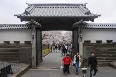 Kanazawa-DSC_6754-b-kl
