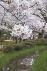 Kanazawa-DSC_6779-b-kl
