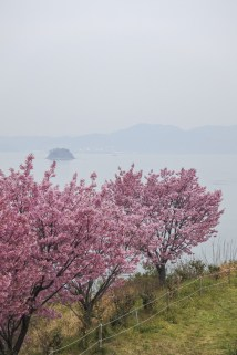 Onomichi-DSC_6467-b-kl