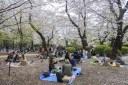 Tokyo-DSC_6929-b-kl