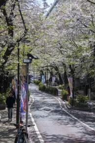 Tokyo-DSC_7065-b-kl