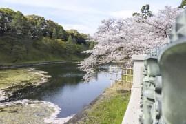 Tokyo-DSC_7095-b-kl