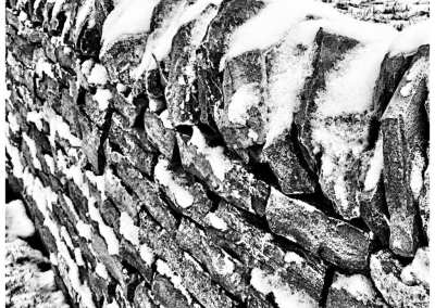 A photo of a stone wall near our house. In the snow.    If we evolved from monkeys, why are there still monkeys around? Just seeing if anyone reads this stuff.