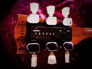 electric tuners