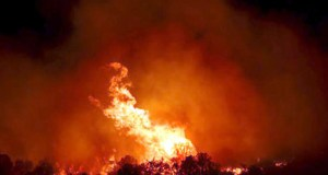massive forest fire