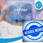 Igarshi-Motors-Reverse-Merger-Agile-Sub-Electic