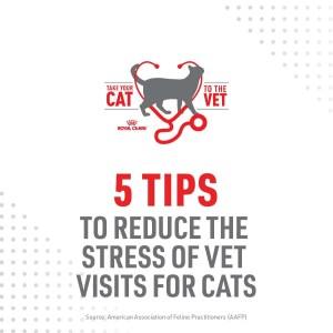 1_Cat2Vet-2021-5TipstoReduceStress-Social