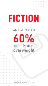 2_Cat2Vet-2021-FactorFiction-Overweight-Social