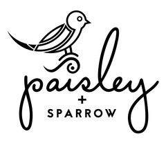 PaisleySparrowLogo-1_copy_medium