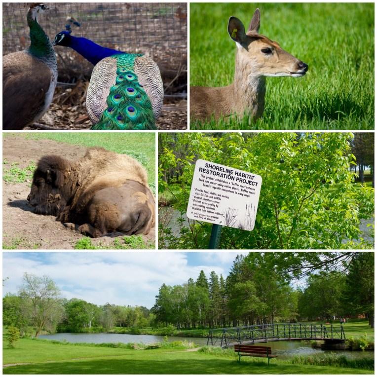 Sunnybrook Park Wadena MNBucketList