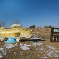 The World's Largest Walleye