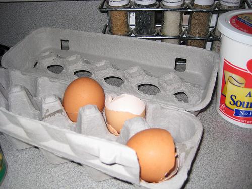empty-eggs.jpg