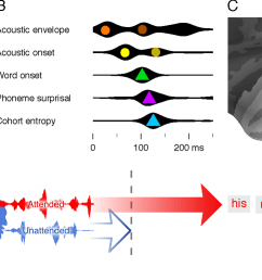 a illustration of the main properties of speech processing that were used to model brain responses detection of word onsets green prediction of the  [ 1350 x 773 Pixel ]