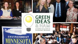 Green Ideas and Ham