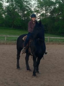 Casey (black horse)