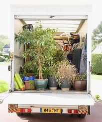 Packing the garden