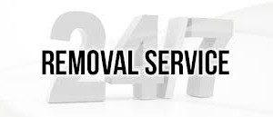 removal-300x129