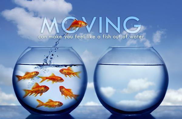 Moving_Fish