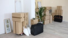 harlow-house-removal-company